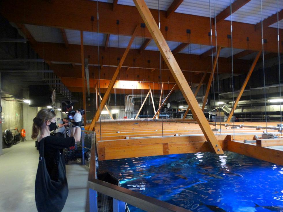 AFRYKARIUM OD KUCHNI – nietypowa ścieżka zwiedzania przez zaplecza oceanarium